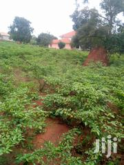 1.5acers Land for Sale in Abony Villas Kitende Asking 650m Negotiable | Land & Plots For Sale for sale in Central Region, Kampala