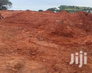 ENTEBBE ROAD NKUMBA (Lake View): Plots 50×100 & 100×100 | Land & Plots For Sale for sale in Central Region, Masaka