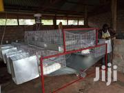 Executive Combined Rabbit Cages At Wholesale Price | Livestock & Poultry for sale in Central Region, Kampala