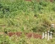 Mityana Road, Kiwawu: 60×90 At 2.5m | Land & Plots For Sale for sale in Central Region, Kampala