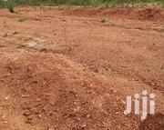 MITYANA ROAD MUDUUMA | Land & Plots For Sale for sale in Central Region, Kampala