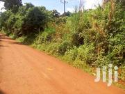 5 Square Miles Of Land On Sale In Baale-kayung Each Acre At 2m | Land & Plots For Sale for sale in Central Region, Kayunga