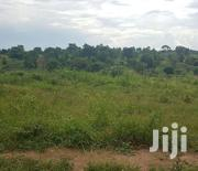 8 Acres of Land for Sale in Nakaseke,Luwero With Title (Private Mailo) | Land & Plots For Sale for sale in Central Region, Luweero