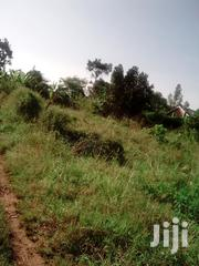 Land 1 Acre Busiika | Land & Plots For Sale for sale in Central Region, Wakiso