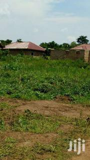 Mukono-plots 50ftby100ft And100ftby100ft | Land & Plots For Sale for sale in Western Region, Kisoro