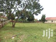 Plot On Sale!! Kisaasi 120m 15decimals | Land & Plots For Sale for sale in Central Region, Kampala