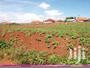 3acers for Sale in Maya Masaka Rd Asking Price 60m Per Acer Ready Titl | Land & Plots For Sale for sale in Central Region, Kampala