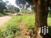 Nsasa Kira Land For Sale 15 Decimals | Land & Plots For Sale for sale in Central Region, Kampala
