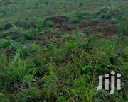 Fertile Genuine Land Available in Gayaza With Titles | Land & Plots For Sale for sale in Central Region, Wakiso
