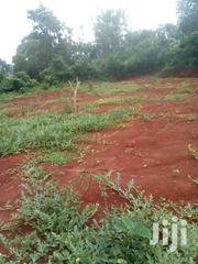 1 Acre And Quarter Land For Sale At Kireka Bira Town | Land & Plots For Sale for sale in Central Region, Kampala