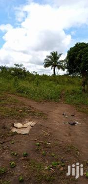 6acres of Prime Farm Land in Zirobwe at 10M Per Acre. | Land & Plots For Sale for sale in Central Region, Kampala