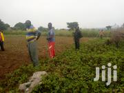 Plot of Land | Land & Plots For Sale for sale in Eastern Region, Soroti