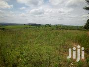 2 Arces of Land for Sale Near Global Tea Factory Kyamuhunga Town | Land & Plots For Sale for sale in Western Region, Bushenyi