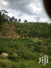 2 Arces of Land for Sale Near Kyamuhunga Tea Factory | Land & Plots For Sale for sale in Western Region, Bushenyi