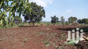 Land In Busika For Sell 0850hecters On A Private Milo Land | Land & Plots For Sale for sale in Central Region, Wakiso