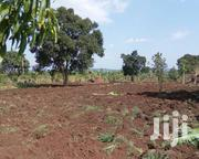 1.5acre of Land for Sell in Busika | Land & Plots For Sale for sale in Central Region, Luweero