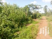 Land At Gayaza For Sale   Land & Plots For Sale for sale in Central Region, Kampala