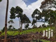 Commercial Land Touching on Lake Victoria 244 Acres Buikwe District | Land & Plots For Sale for sale in Central Region, Mukono