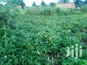 Plots for Sale in Lira Town, Railways Division. | Land & Plots For Sale for sale in Nothern Region, Lira