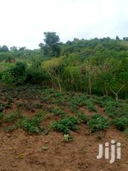 An Acre of Land for Sell at Mpigi Mpambire | Land & Plots For Sale for sale in Central Region, Kampala