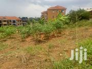 20 Decimals At Muyenga | Land & Plots For Sale for sale in Central Region, Kampala