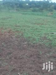 10 Acres for Sale 17m Each Located Namaliri Along Kayungd | Land & Plots For Sale for sale in Central Region, Kampala
