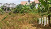 50x100 Plot In Upper Buziga NEGOTIABLE | Land & Plots For Sale for sale in Central Region, Kampala