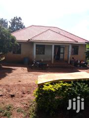 Residential Homes for Sale in Kungu Next to Kyanja | Houses & Apartments For Sale for sale in Central Region, Kampala