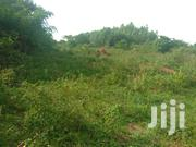 150acres At Forcedsale In Bukakata On Masaka Rd | Land & Plots For Sale for sale in Central Region, Kampala