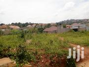 Nice Land for Sale 👍 in Kira 25 Decimals | Land & Plots For Sale for sale in Central Region, Kampala