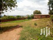 Bulindo Land For Sale And 25 Decimals | Land & Plots For Sale for sale in Central Region, Kampala