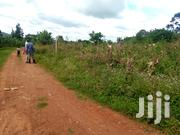 4 Acres for Sale in Nkokonjeru Town at 20million Each | Land & Plots For Sale for sale in Central Region, Mukono