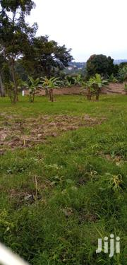 🇺🇬 *1 Acre for Auction* Located at Mpererwe Mugalu | Land & Plots For Sale for sale in Central Region, Kampala
