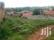 Land for Sale in Najjera-Kungu 100/50ft | Land & Plots For Sale for sale in Central Region, Kampala