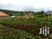 Plot on Sale 7m Located at Matugga Kigogwa  Just : 700meters From | Land & Plots For Sale for sale in Central Region, Kampala