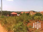 Mukono Nabuti Plots on Sale at 26m | Land & Plots For Sale for sale in Central Region, Mukono