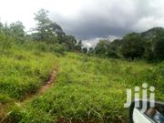 Najjera-buwate 25 Decimals For Sale | Land & Plots For Sale for sale in Central Region, Kampala