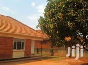 Marvarous Four Self Contained Bed Room Stand Alone At 1.2m In Kirinya | Houses & Apartments For Rent for sale in Central Region, Kampala