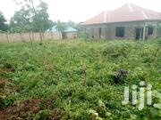 Land for Sale in Nakasaja 100/50ft | Land & Plots For Sale for sale in Central Region, Kampala