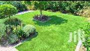 Natural Hybrid Grass for U | Garden for sale in Central Region, Kampala