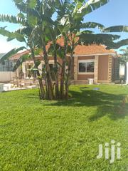 Kira Namugongo Four Bedrooms Four Bathrooms With Genuine Land Title | Houses & Apartments For Sale for sale in Central Region, Kampala