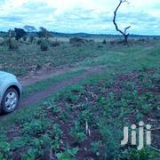 700 Acres in Mubende at 3.5m Each | Land & Plots For Sale for sale in Central Region, Mubende