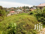 Land for Sale in Kira-Nsasa 17 Decimals | Land & Plots For Sale for sale in Central Region, Kampala