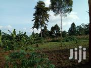 Plots for Sale | Land & Plots For Sale for sale in Central Region, Mukono
