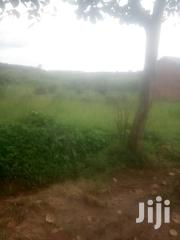 Private Milo Land   Land & Plots For Sale for sale in Central Region, Kampala