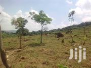 Very Hot 5 Acres on Quicksale in Busunju Hoima Rd at 12m Shs Per Acre | Land & Plots For Sale for sale in Central Region, Kampala