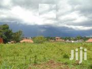 Plot On Sale!! Kira-bulindo-nsasa | Land & Plots For Sale for sale in Central Region, Kampala