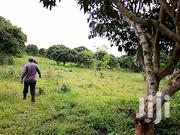 20 Acres on Sell in Kasanje Entebbe Road | Land & Plots For Sale for sale in Central Region, Kampala