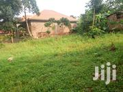 Plot for Sale in Namugongo-Bukere,30ftby50ft Asking 4.5m Agreement | Land & Plots For Sale for sale in Central Region, Mukono
