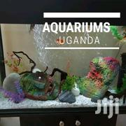 Acquariums On Sale Today | Pet's Accessories for sale in Central Region, Kampala